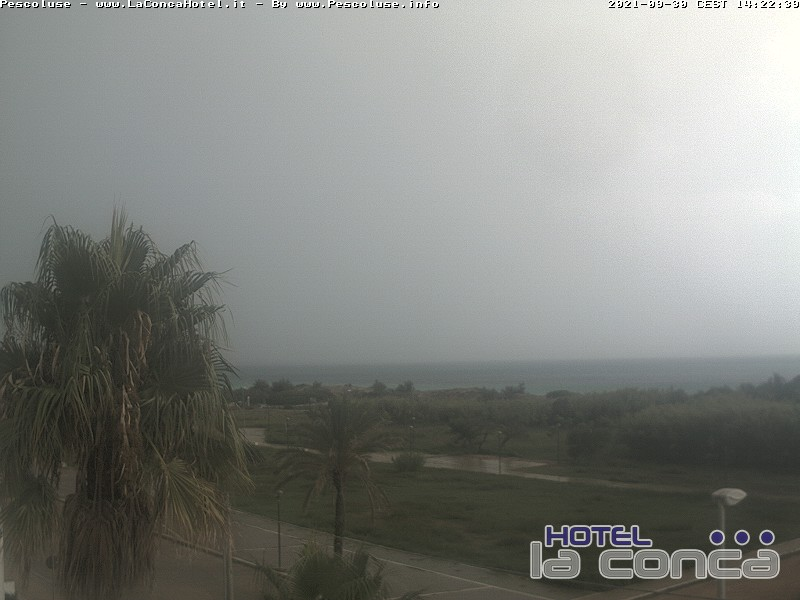 Webcam panoramica spiaggia pescoluse