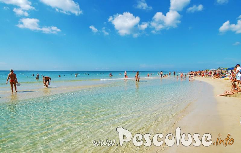 Foto- Maldive Del Slaento Pescoluse