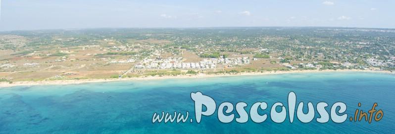 Panoramica in volo spiaggia id Pescoluse