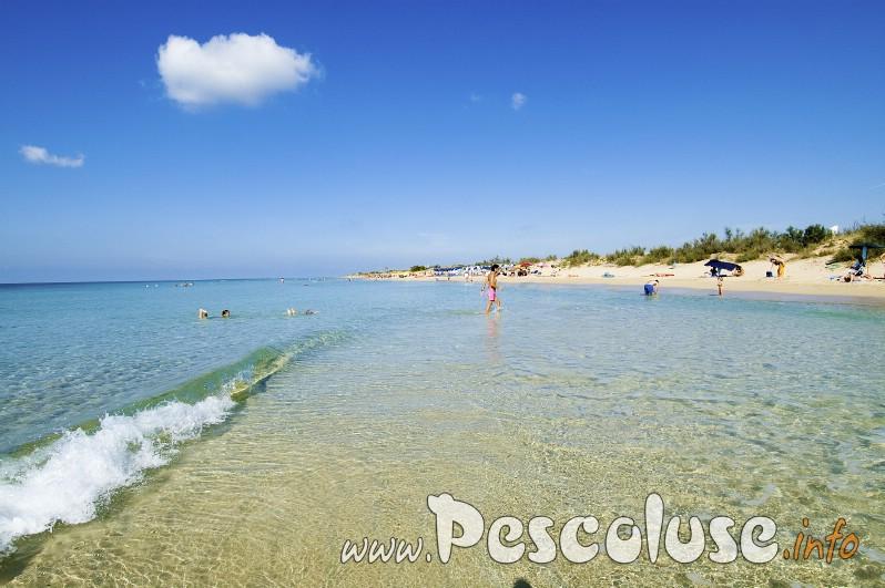 spiaggia-bianca-di-pescoluse