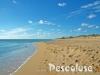 foto-spiaggia-pescoluse-le