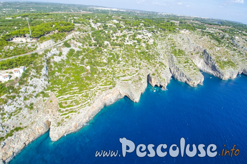 Costa adriatica foto Aerea