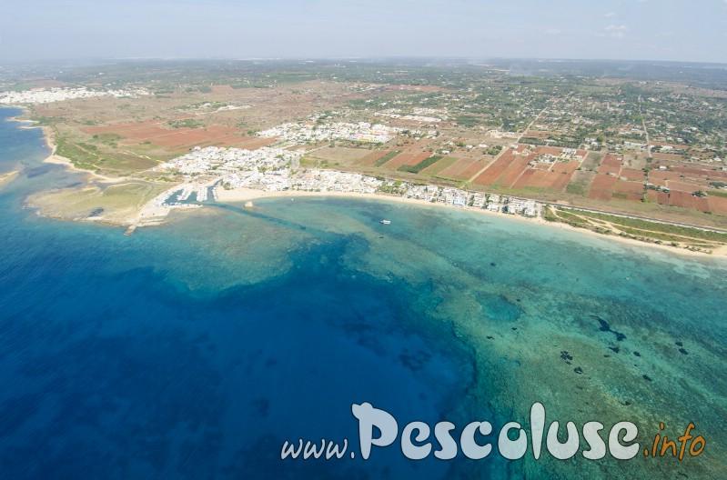 Foto al volo spiaggia di torre pali