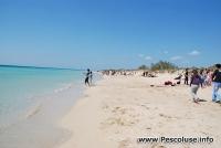 Spiaggia di Pescoluse 25 Aprile